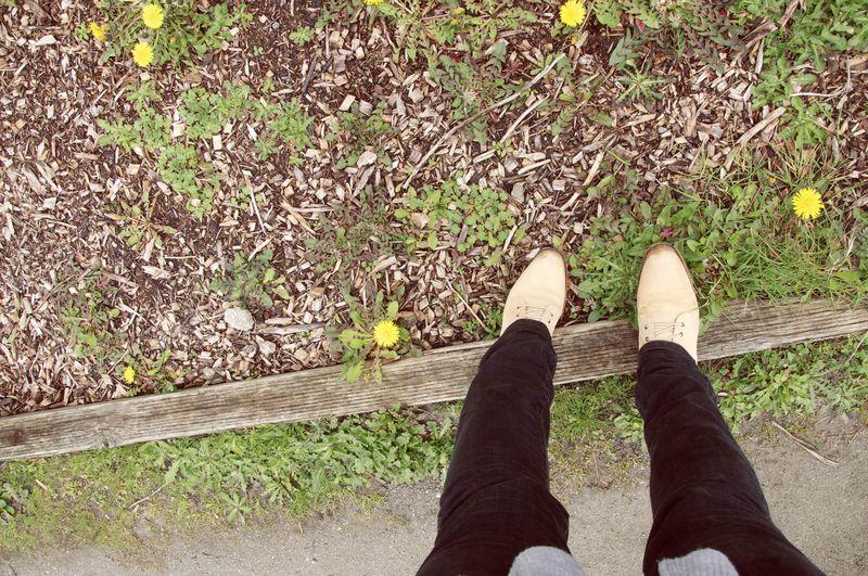 Dandelion_shoes