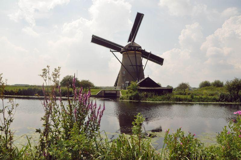 Pretty_windmill