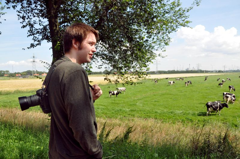 Gene_and_cows