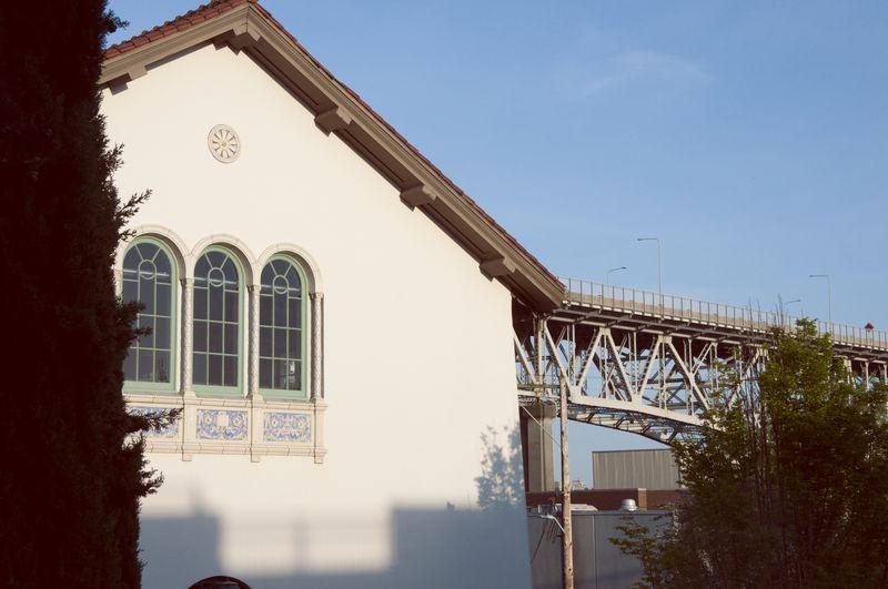 Library_and_bridge