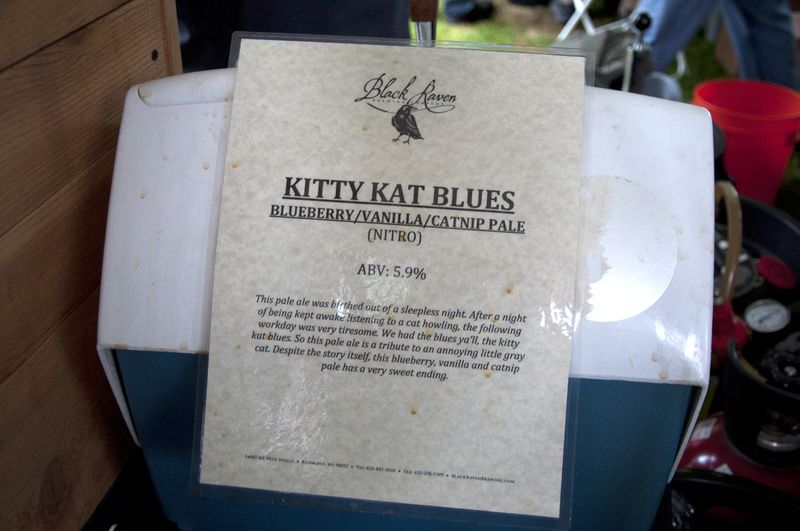 Kitty_kat_blues