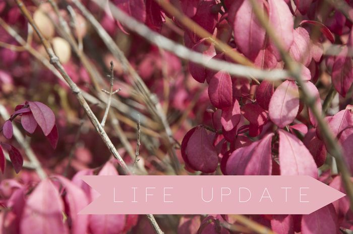 Life_update